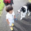 ☆ボーダー☆ お散歩