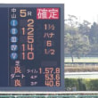 2017年12月3日 中山競馬場観戦記(メジャーラプソディ 新馬勝ち!)