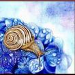 色鉛筆画434 (紫陽花とカタツムリ)