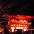 京都のホタル