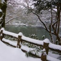 雪の古城公園