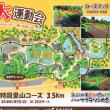 昭和村ハーフマラソン大会