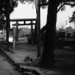 写真教室、日本遺産、日向学院同窓会