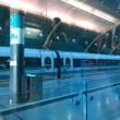 上海〜!°˖✧◝(⁰▿⁰)◜✧˖° 帰国へ