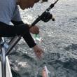 涼しくて釣り日和でした(^o^)/
