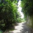散歩(鋸山)