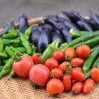 いろんな野菜の収穫を…