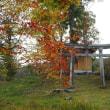 軽井沢のいろいろ 軽井沢の別荘地に建つ神社
