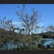 神水湖の秋