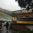 ココファームワイナリー収穫祭2016