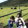 八丈島の旅①南原千畳敷・ふれあい牧場