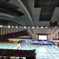 2018年11月10日  東京  辰巳水泳場  Take your mark