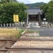 参道を電車が通る神社ポタ 20180520