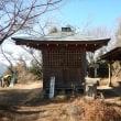 奥武蔵・高山不動尊の紅葉・・・銀杏と紅葉の絨毯は吹き飛ばされました。