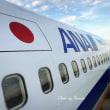 日本国の飛行機が並ぶ中をバスて搭乗機へ