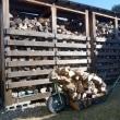 新しい棚の薪を