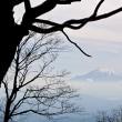 今年の富士山は如何に?
