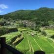坂折棚田に行ってきました。