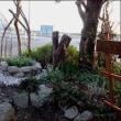 井戸風花壇のコーナー