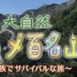 NHKで五泉市紹介「大自然グルメ百名山~家族でサバイバルな旅~」早出川の源流へ