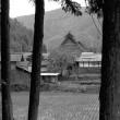 茅葺き民家 木々の間から垣間見る