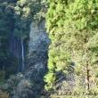 仁淀川水系の秘境!滝