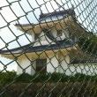 維新史に埋もれた園部城