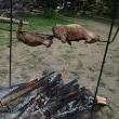ジビエ肉を味見♪ サルスベリの丘にて