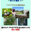 2018年8月8日/〈日記〉587・電子書籍「アサギマダラに会える日本・台湾15ポイント」に津屋崎浜が掲載