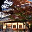 京都散策11・・・【いな】