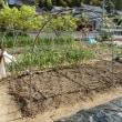 棚で栽培の準備