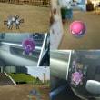 ポケモンGO『 Pokemon GO 』をやってみた!!スマホゲーム解説実況動画 No1 公園デビュー!!HAPPY・ TV 見てね!!
