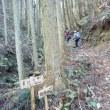 福岡県の山 高根山~白金山周回へ