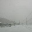 なかなかの雪道でごわす
