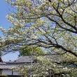 4/21 JR東海さわやかウォーキング