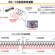4K8K放送 東京オリンピック 新4K8K衛星放送 ロードマップ 右旋 左旋 暗雲4K8K