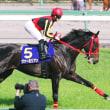 冬の交流GⅠ・川崎記念の登録馬発表!