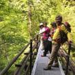 WOC・登山部 2018.05.16 東平~西赤石山~銅山越周回