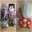 夏野菜の苗 買い足し