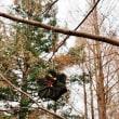 クリスマス仕様の神戸森林植物園