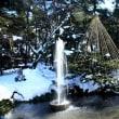 雪の兼六園~♪