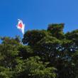 高佐砦の頂上にはこうして日の丸の旗が掲げられています。 (Photo No.14227)