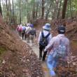 高齢の水曜ジョイフルは、旧山下道前半を健脚組47人が歩く。