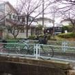 京都の西の方面へサイクリングと思いましたが雨ですぐに帰ってきました