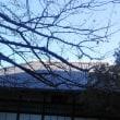 南麻布・光林禅寺へ