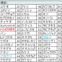 鳥撮りデータ53(2013.2ー3)