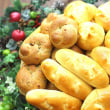【天然酵母ロールパンセット】横浜の美味しいパン かもめパンの人気商品です ♪
