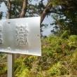 鋸岳(上天草)