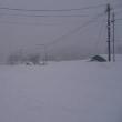 雪ふり続く
