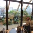 緑のテラスのある粋な豊洲図書館